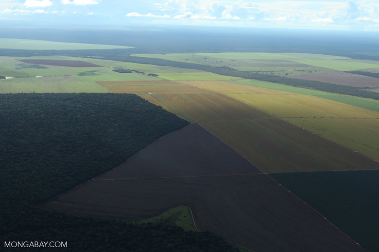Patchwork of legal forest reserves, pasture, and soy farms in the Brazilian Amazon [brazil_0617]