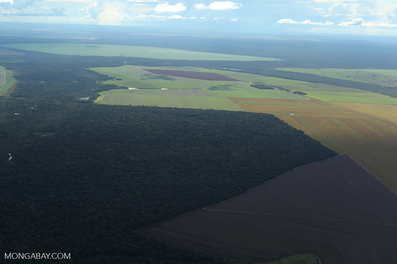 Patchwork of legal forest reserves, pasture, and soy farms in the Brazilian Amazon [brazil_0618]