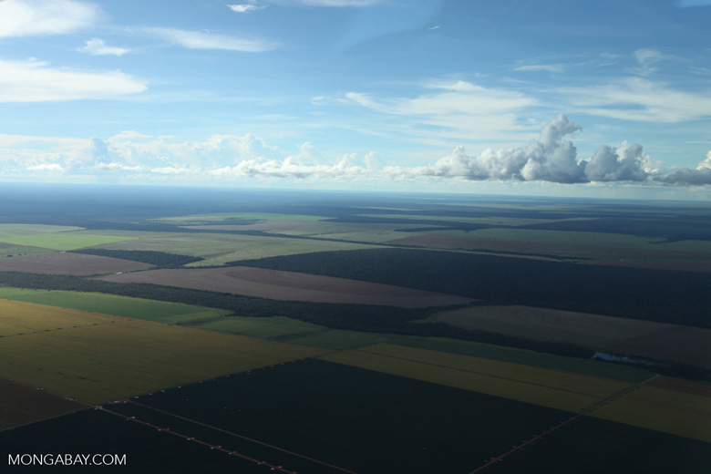 Patchwork of legal forest reserves, pasture, and soy farms in the Brazilian Amazon [brazil_0619]
