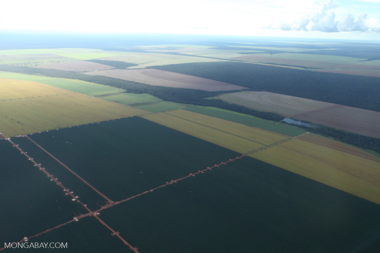 Patchwork of legal forest reserves, pasture, and soy farms in the Brazilian Amazon [brazil_0622]