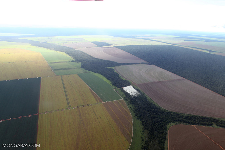 Patchwork of legal forest reserves, pasture, and soy farms in the Brazilian Amazon [brazil_0624]
