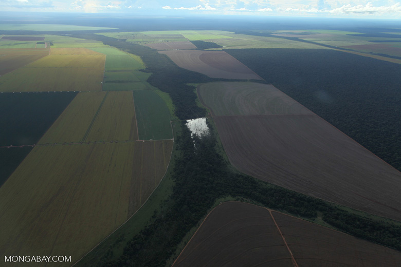 Patchwork of legal forest reserves, pasture, and soy farms in the Brazilian Amazon [brazil_0626]