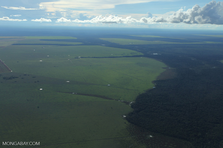 Patchwork of legal forest reserves, pasture, and soy farms in the Brazilian Amazon [brazil_0629]