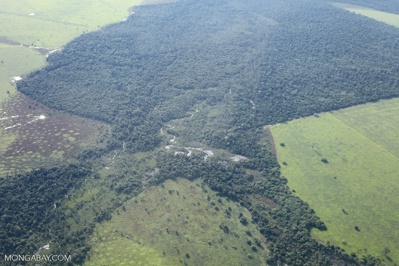 Patchwork of legal forest reserves, pasture, and soy farms in the Brazilian Amazon [brazil_0630]