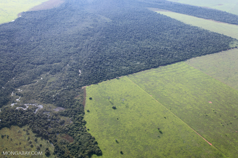 Patchwork of legal forest reserves, pasture, and soy farms in the Brazilian Amazon [brazil_0631]
