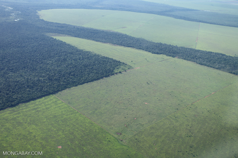 Patchwork of legal forest reserves, pasture, and soy farms in the Brazilian Amazon [brazil_0632]