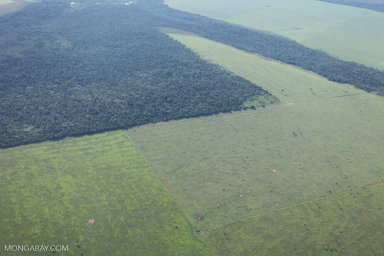 Patchwork of legal forest reserves, pasture, and soy farms in the Brazilian Amazon [brazil_0633]