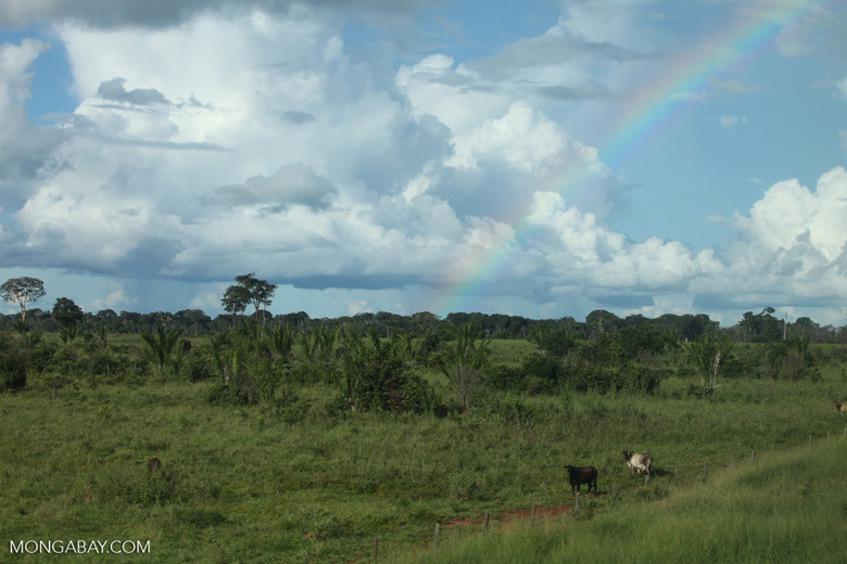 Rainbow, pasture and secondary forest