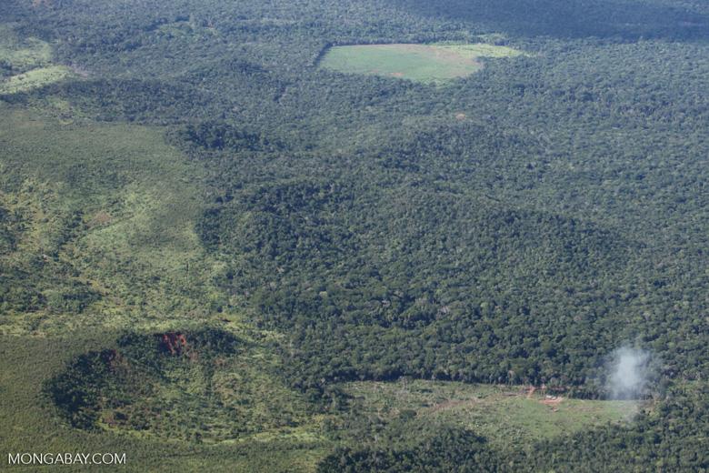 Cerrado - pasture margin [brazil_0775]
