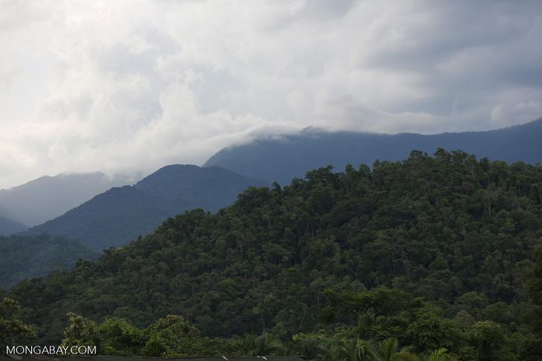 Mountains near Paraty [brazil_155218]