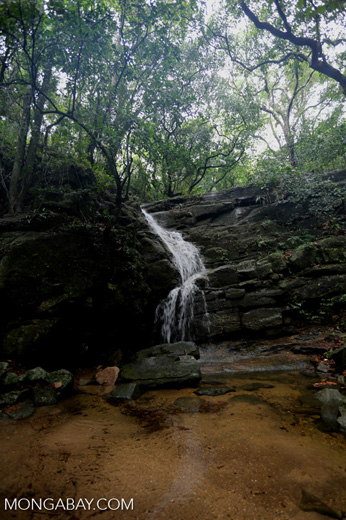 Waterfall in Tijuca Forest [brazil_155724]