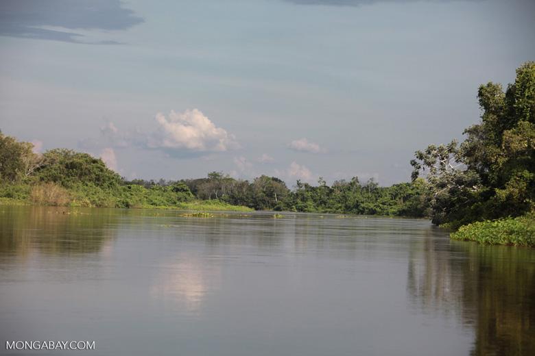 Cuiaba river [brazil_1830]