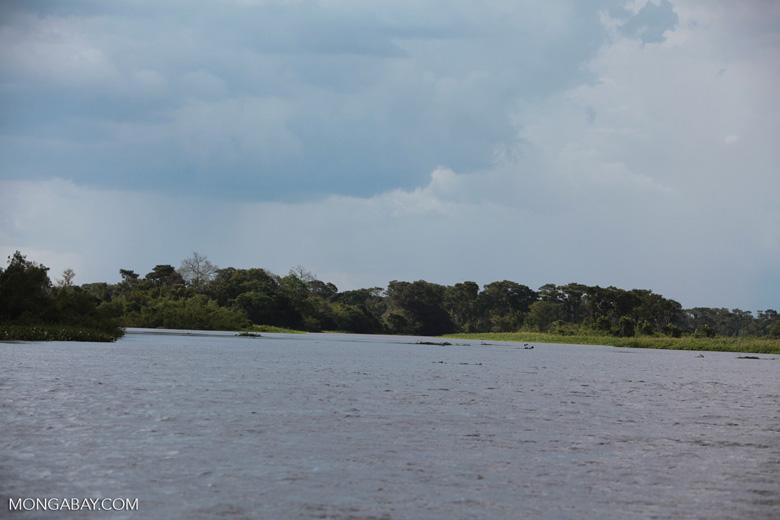 Cuiaba river [brazil_1832]