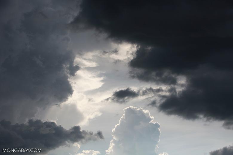 Clouds over the Panatnal [brazil_1844]