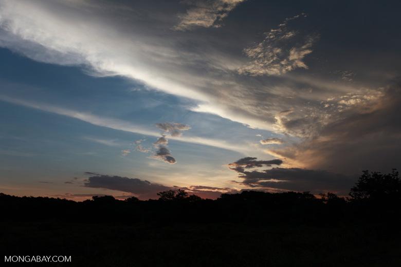 Sunset over the Pantanal [brazil_1902]