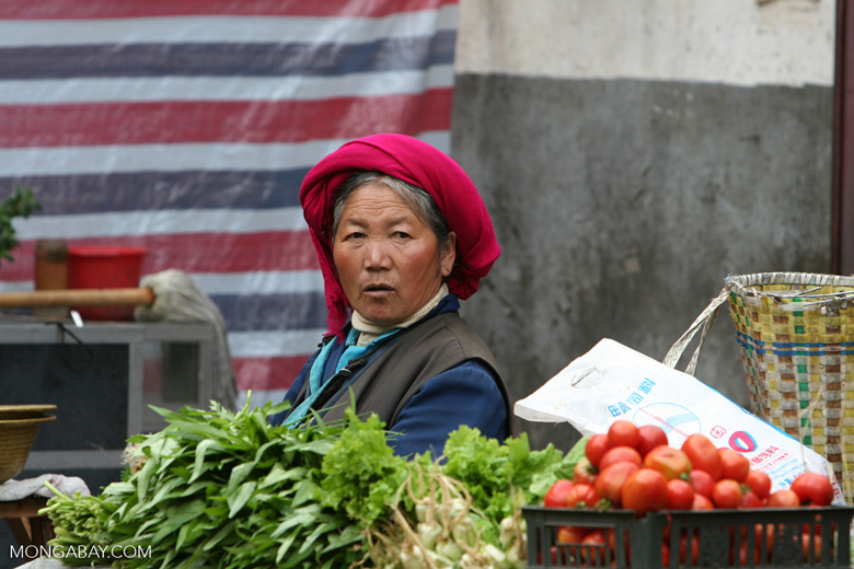 Woman in the Deqin market
