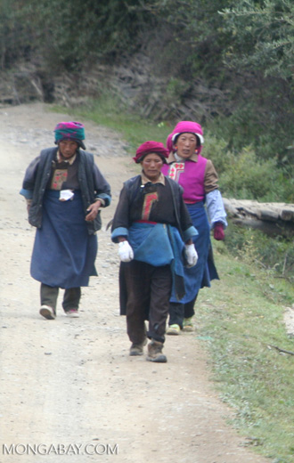 Tibetan women walking on a road near Ringa