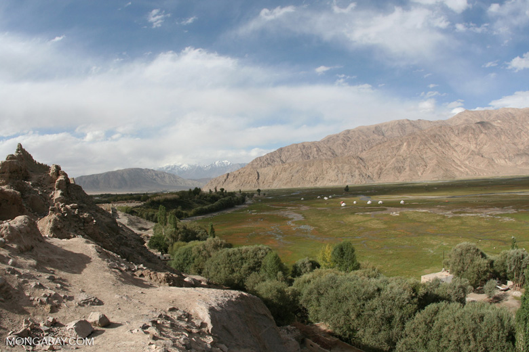 Yurts in Tashkurgan meadow