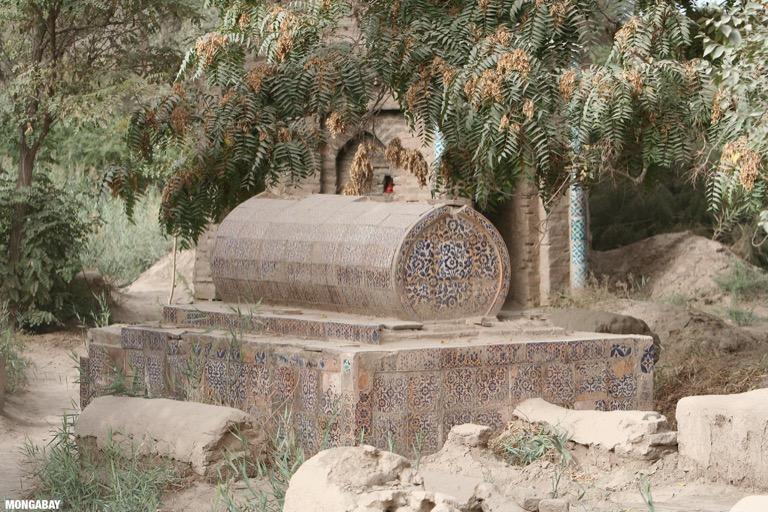 Tile mosiac tomb