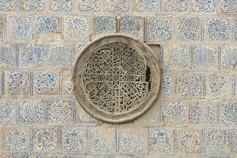 Tiles at Altun Mosque