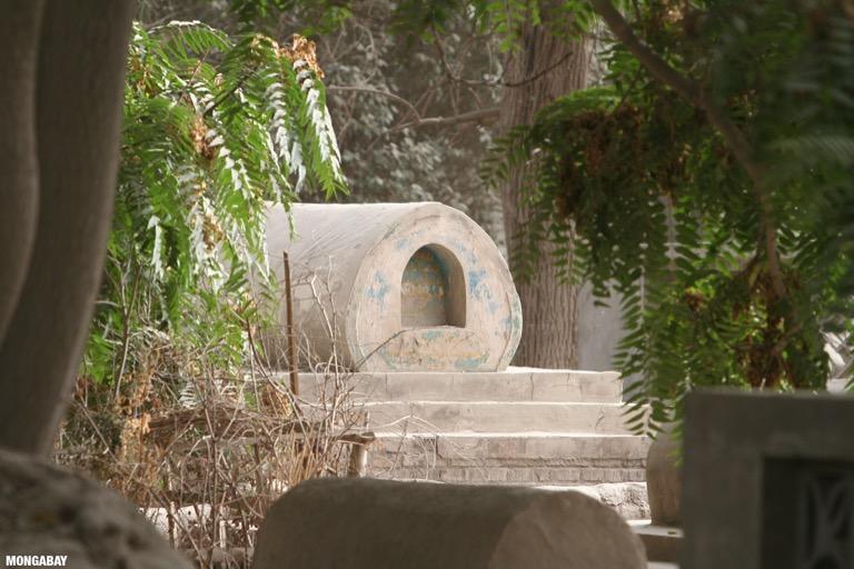 Uygur tomb