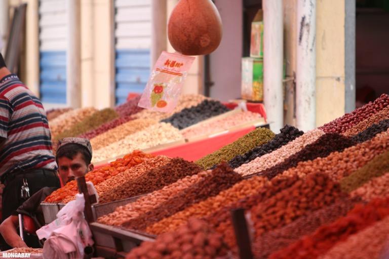 Nut seller in Kashgar
