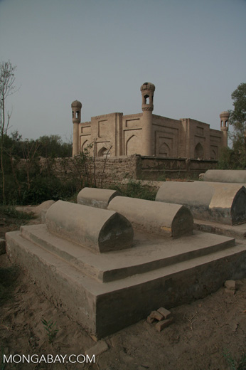 Tombs at the Tomb of Yarkand Kings in Yarkand