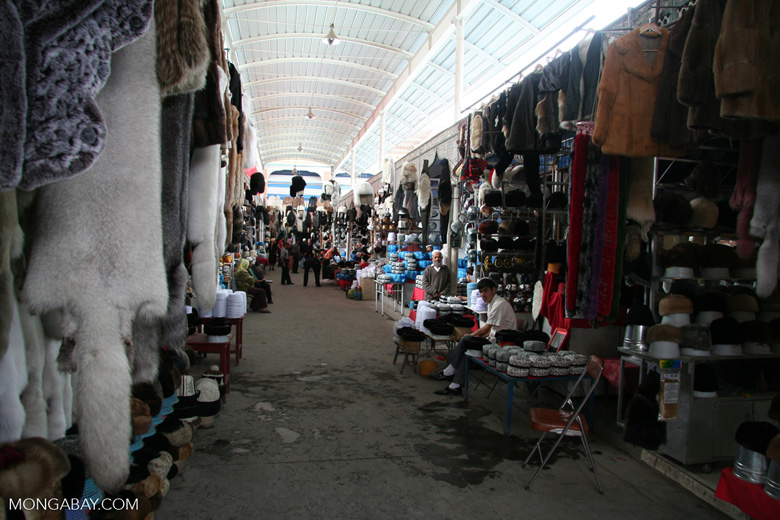 Furs in a Chinese market