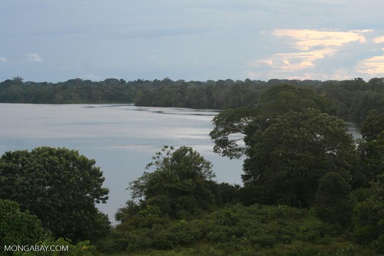Amazon river near Puerto Nariño