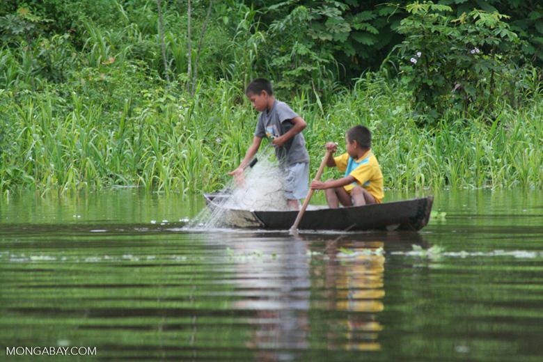 Amazon children using a fishing net