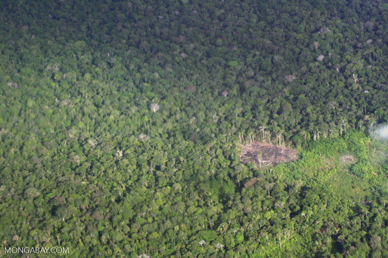 Overhead view of deforestation in the Colombian Amazon