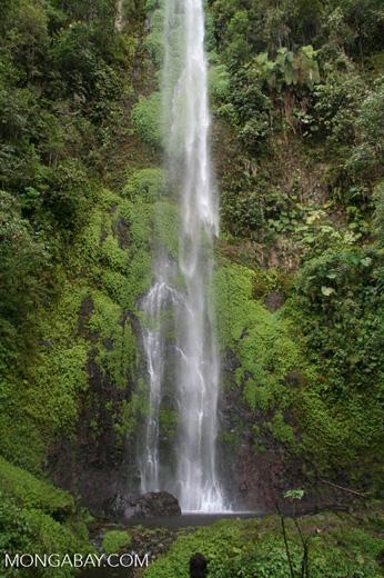 Waterfall at Santuario Otún Quimbaya