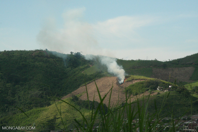 Agricultural burning near Pereira