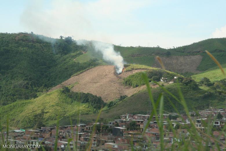 Agricultural fire near Pereira