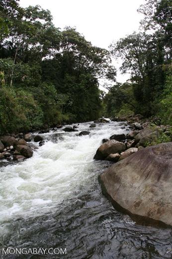 Otún river