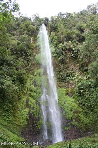 Waterfall at Santuario Otún Quimbaya [co03-9705]