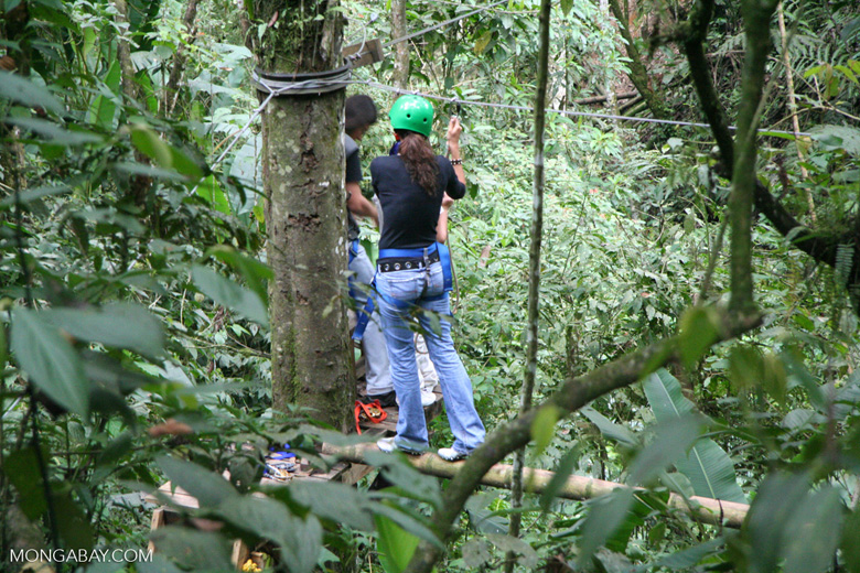 Canopy ecotourism in Periera