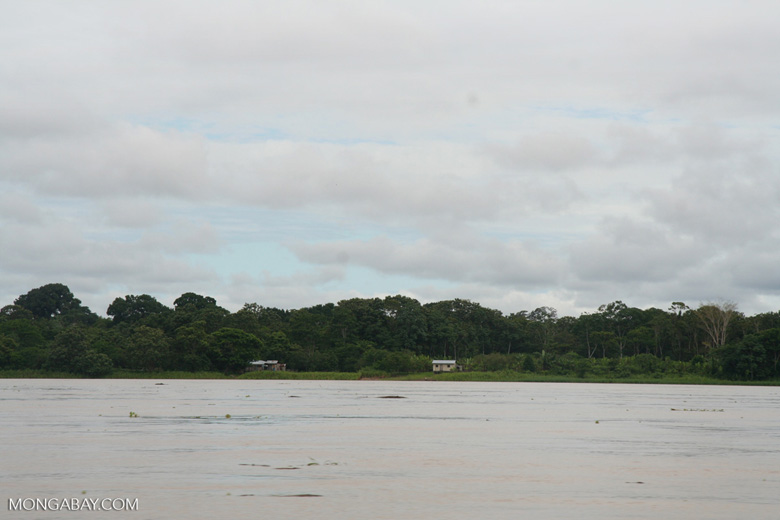 Homes on the bank of the Amazon river