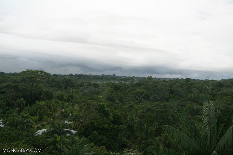 Puerto Narino, a 'green' city in the Amazon rainforest