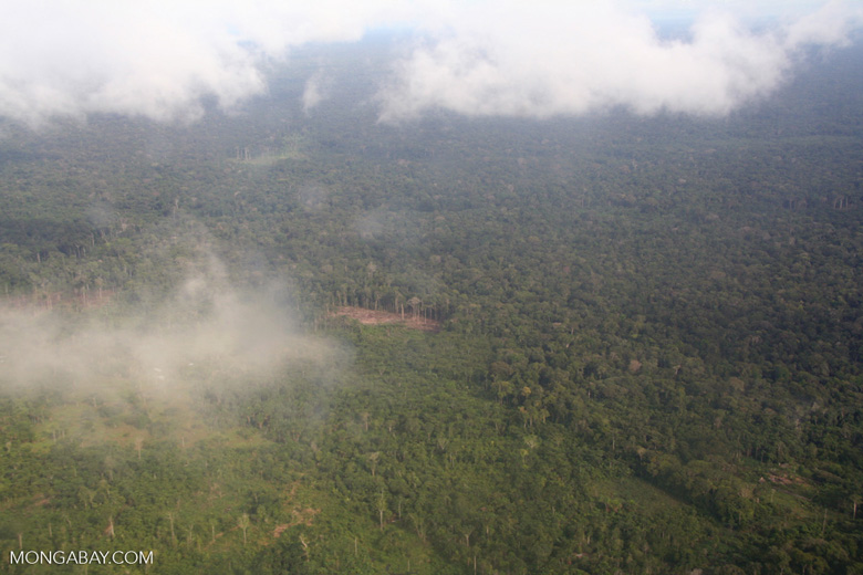 Airplane view of slash-and-burn forest clearing in the Amazon rainforest of Colombia