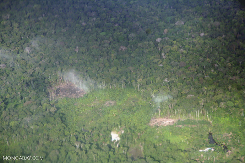 Overhead view of forest clearing in the Colombian Amazon