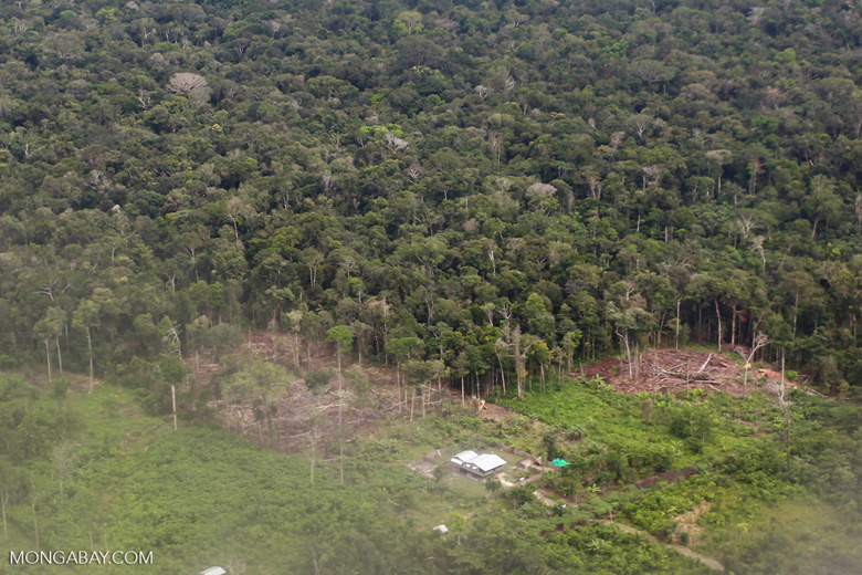 Smallholder rainforest clearing in the Amazon