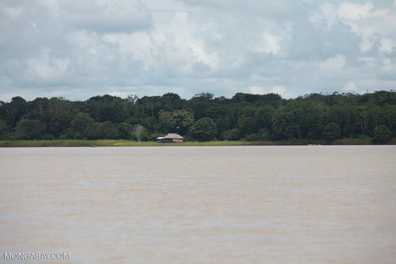 Home on the banks of the Amazon river