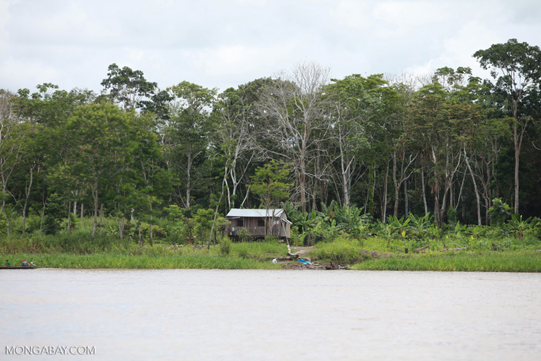 Home on the banks of the Amazon river [colombia_0177]