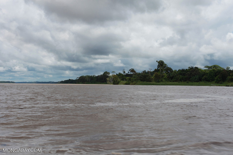 The Amazon River in Colombia