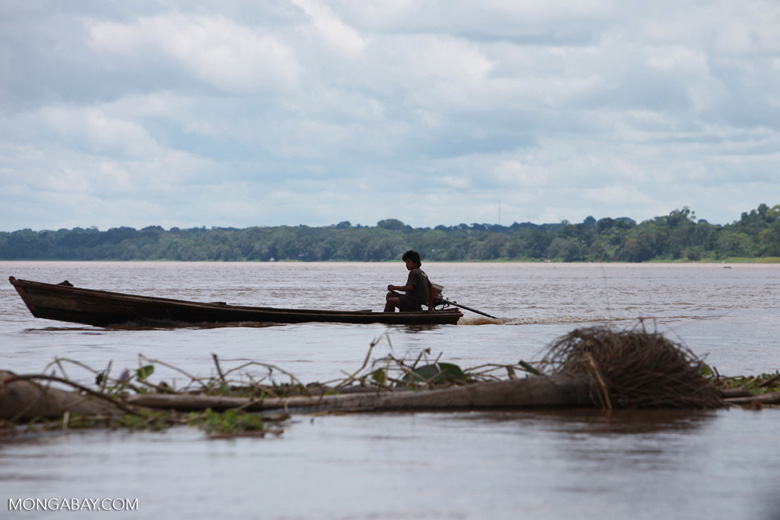 Man driving a boat in the Colombian Amazon [colombia_0220]