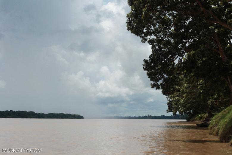 Rain falling on the Amazon River