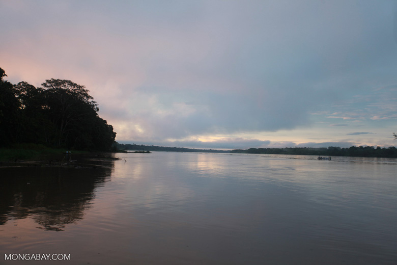 Amazon River dawn