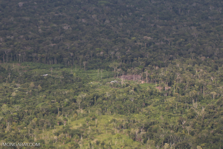 Aerial view of secondary and primary forest in the Amazon [colombia_1321]