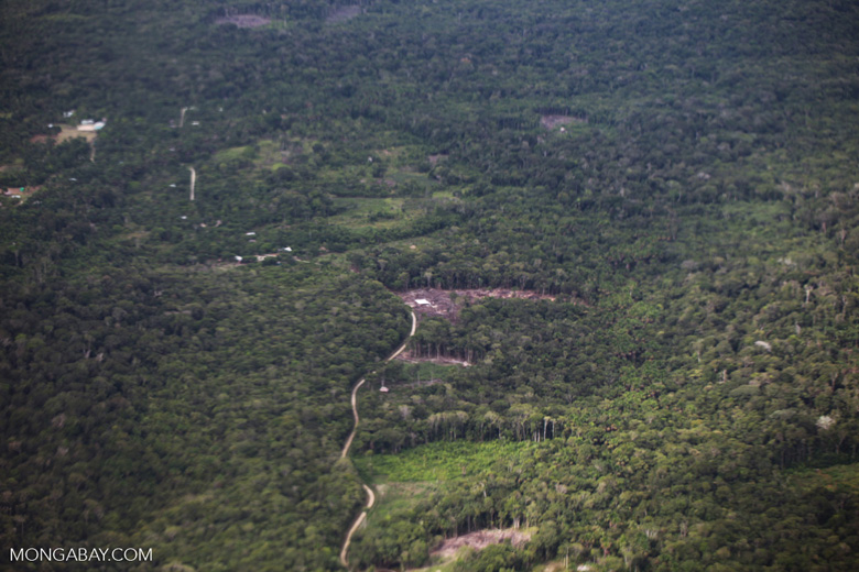 Aerial view of small-holder forest clearing for subsistence cultivation in the Amazon